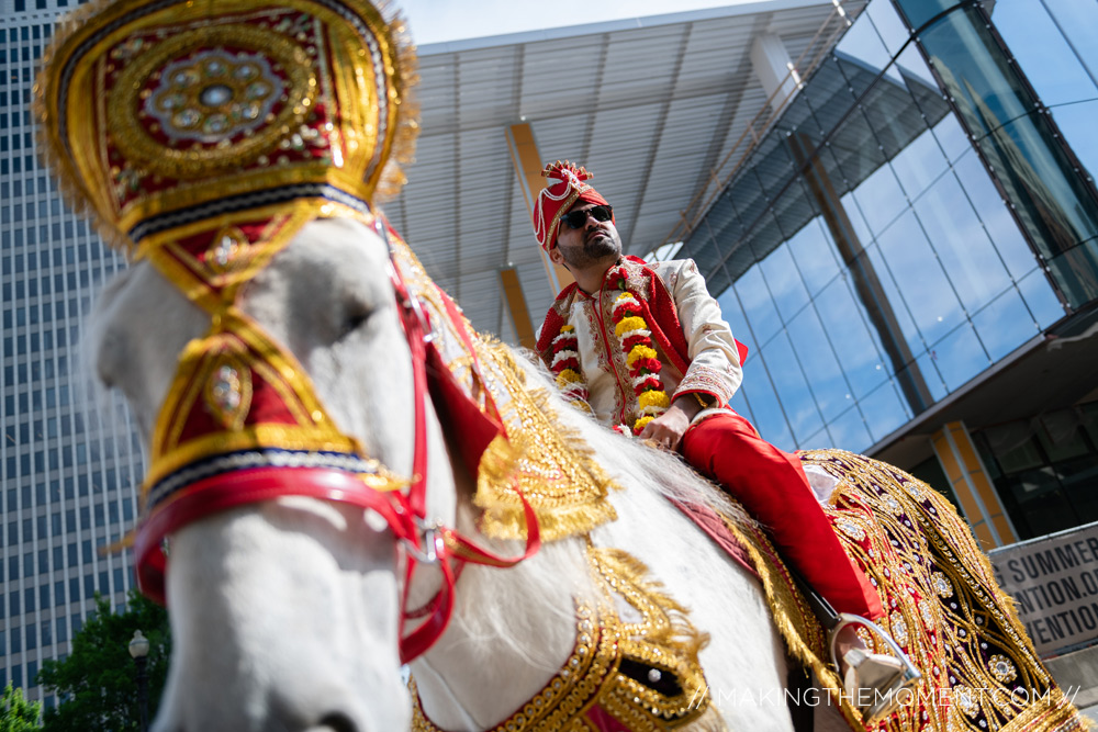 Indian Wedding Barat Horse