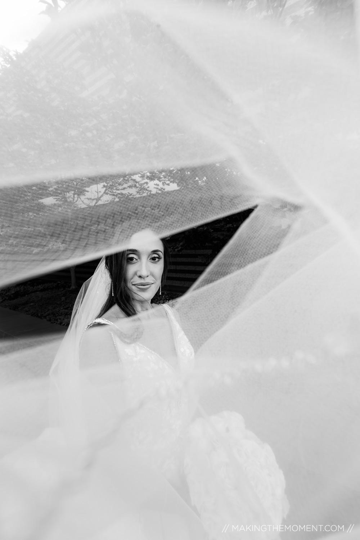 Bridal Veil Cleveland Wedding Photographer
